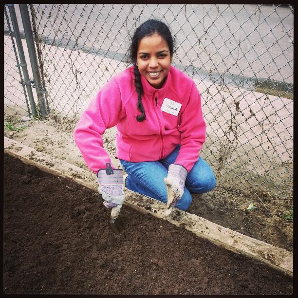 shanella_gardening